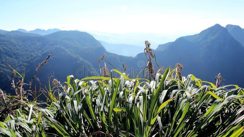 云彩高山全景视图在斯里兰卡 免版税库存照片