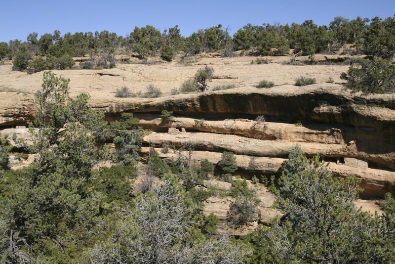 云杉的树上小屋, Mesa Verde,科罗拉多,美国 免版税库存照片