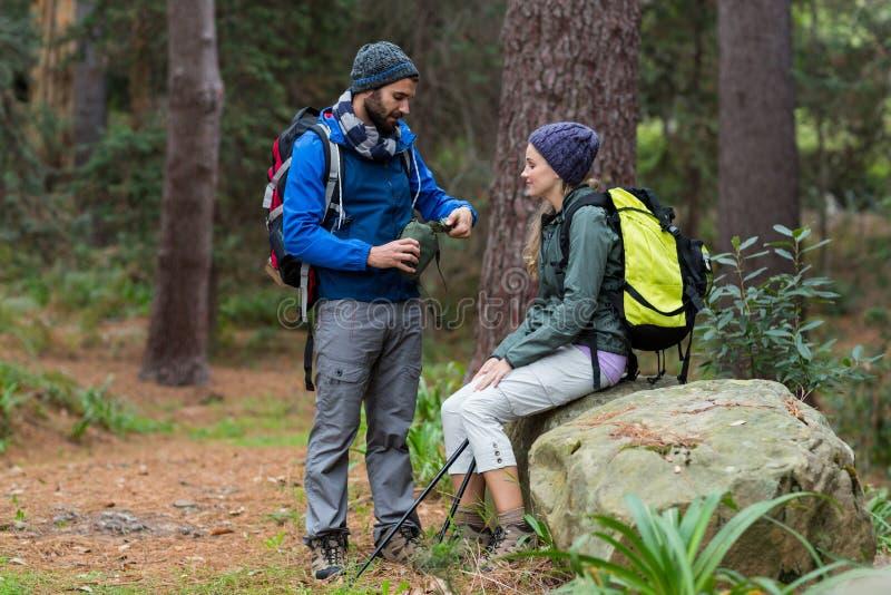 互动互相的远足者夫妇在森林里 免版税库存照片