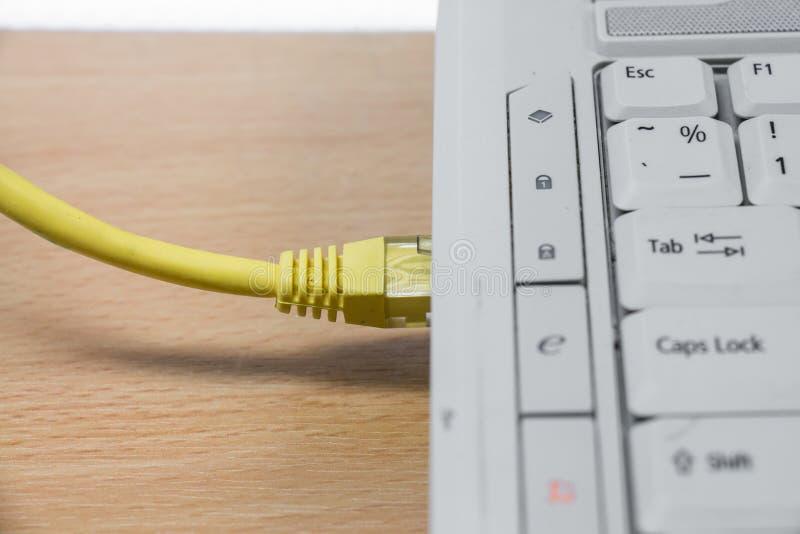 互联网缆绳被连接到计算机 库存照片