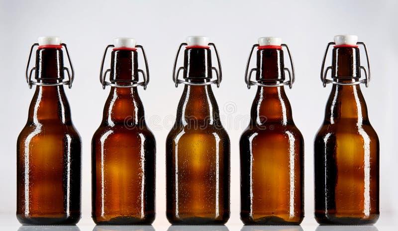 五个空白的玻璃瓶啤酒 库存图片