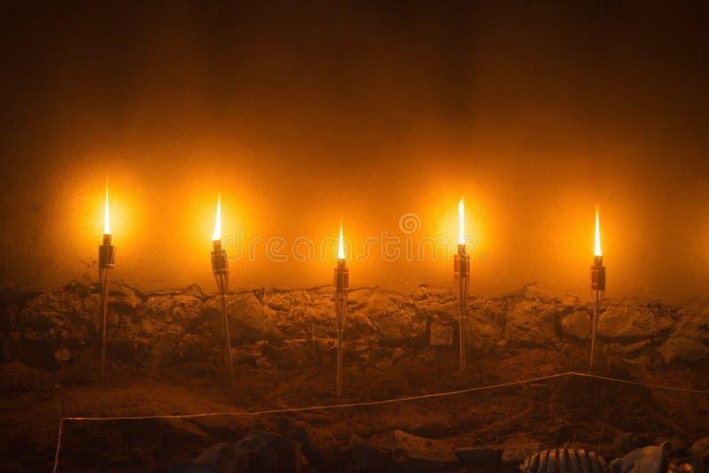 五个轻的火火炬,古老中世纪城堡夜石墙例证  库存照片