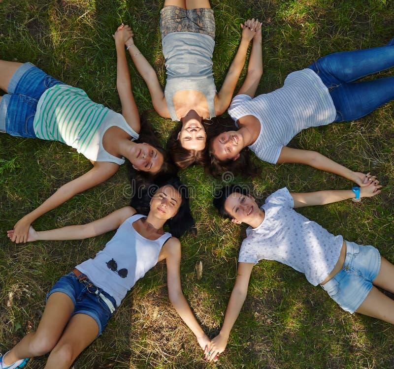 五位小姐lounging在象草的草坪 库存图片