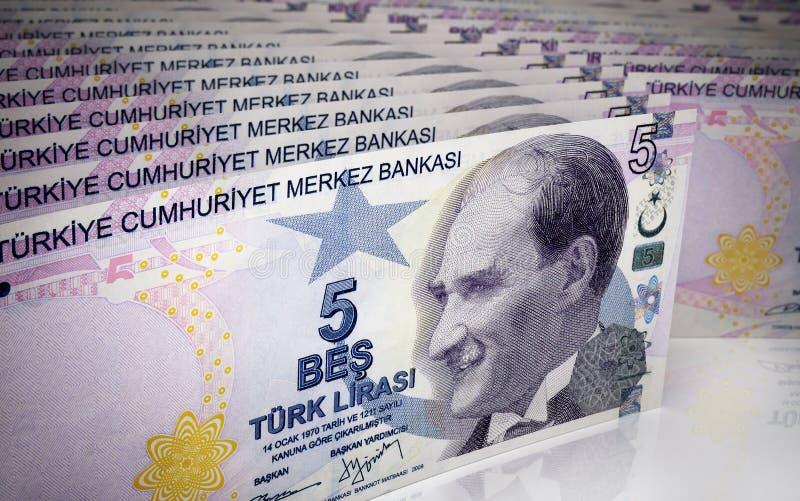 五土耳其里拉 向量例证