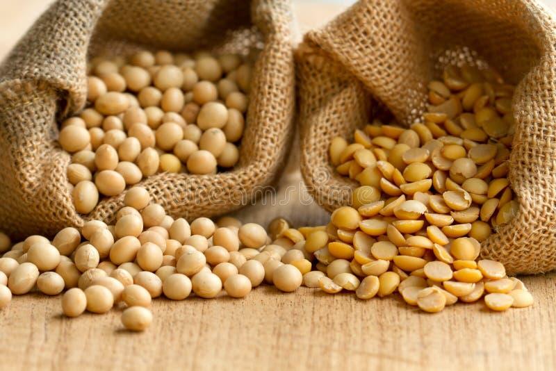 五谷在大袋的种子豆类 图库摄影