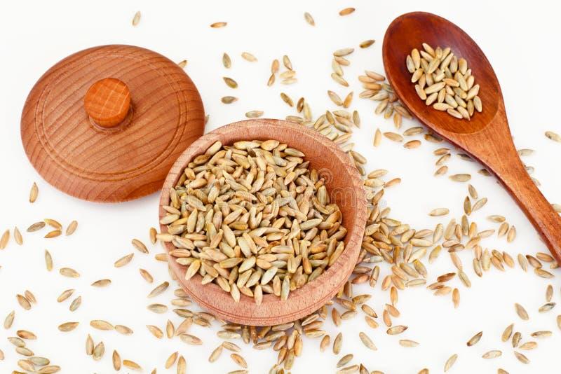 五谷拉伊和麦子 免版税库存照片