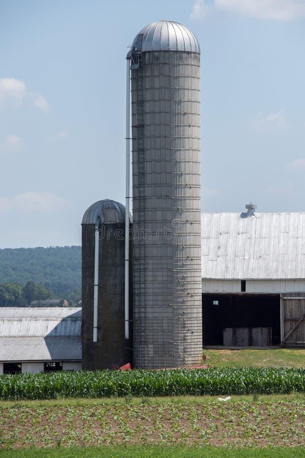 五谷金属筒仓在兰卡斯特宾夕法尼亚安曼人国家 图库摄影