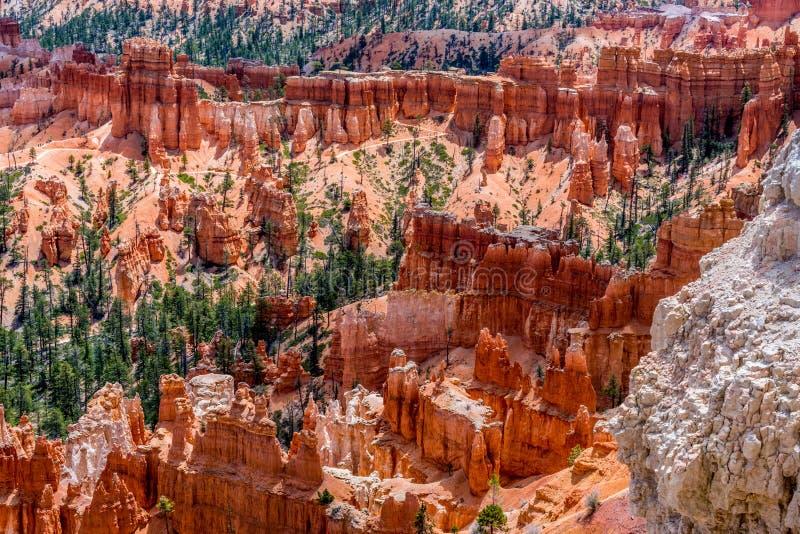 五颜六色的不祥之物岩层在布莱斯峡谷国家公园, U 免版税库存照片
