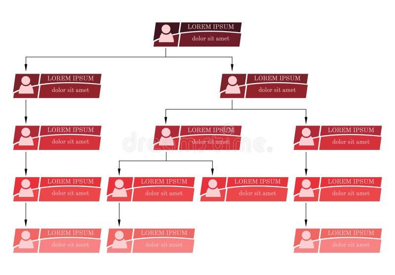 五颜六色的企业结构概念,公司组织系统图计划 向量例证