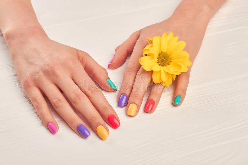 五颜六色的修指甲和一点黄色菊花 库存图片