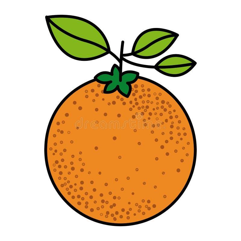 五颜六色的剪影用与词根和叶子的橙色果子 库存例证