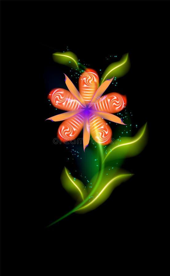 五颜六色的发光的红色花 在黑色的美好的时髦装饰花卉火热的元素 现代有启发性装饰品与 向量例证