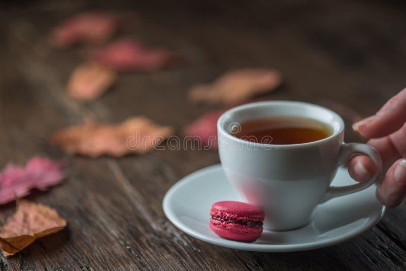 五颜六色的叶子秋天静物画,一杯茶,在老b 免版税库存照片