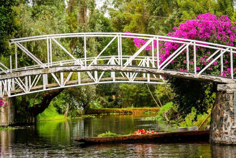 五颜六色的墨西哥霍奇米尔科的浮动庭院在墨西哥城 免版税库存照片