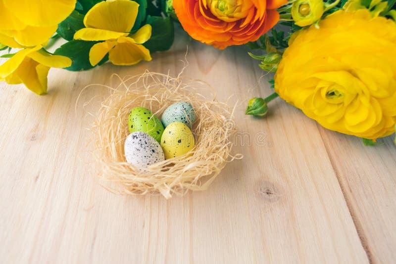 五颜六色的复活节巢用鹌鹑蛋和黄色和橙色花在木背景 免版税库存图片