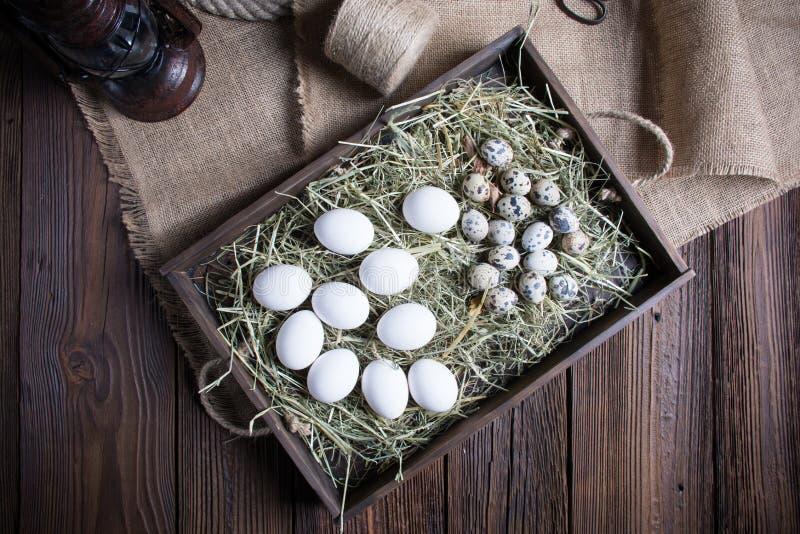 五颜六色的复活节彩蛋和郁金香在白色土气wdooen桌 免版税图库摄影