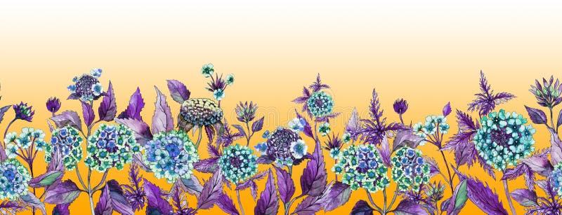 五颜六色的夏天宽横幅 美丽的马樱丹属开花与在橙色背景的紫色叶子 皇族释放例证
