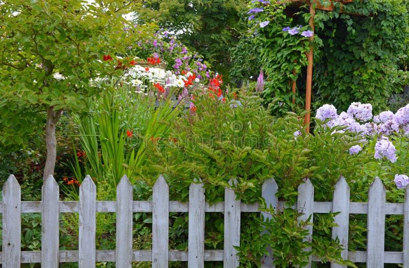 五颜六色的夏天庭院和篱芭 库存图片