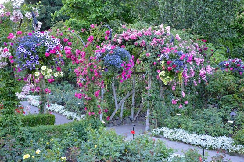 五颜六色的夏天庭院 免版税图库摄影