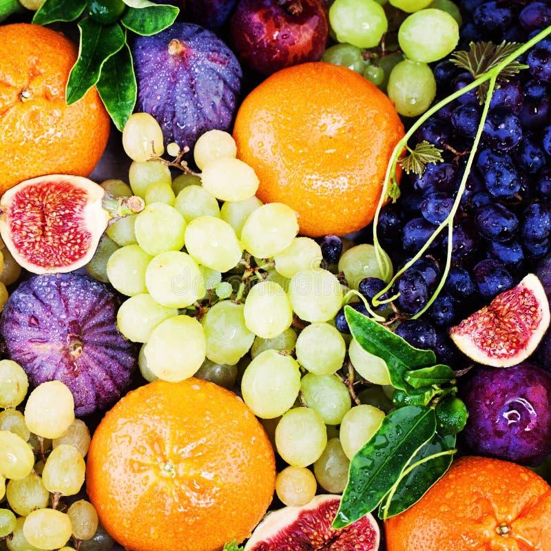 五颜六色的夏天果子背景用葡萄、无花果和蜜桔 图库摄影