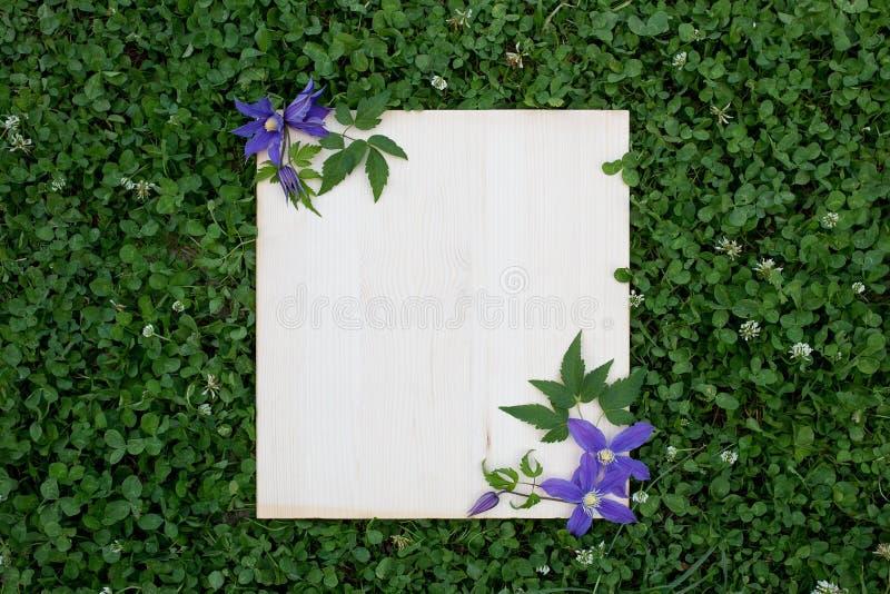 五颜六色的夏天花和木板在绿草 库存照片