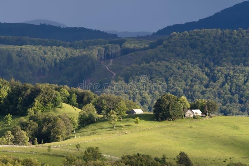 五颜六色的夏天风景 免版税库存图片