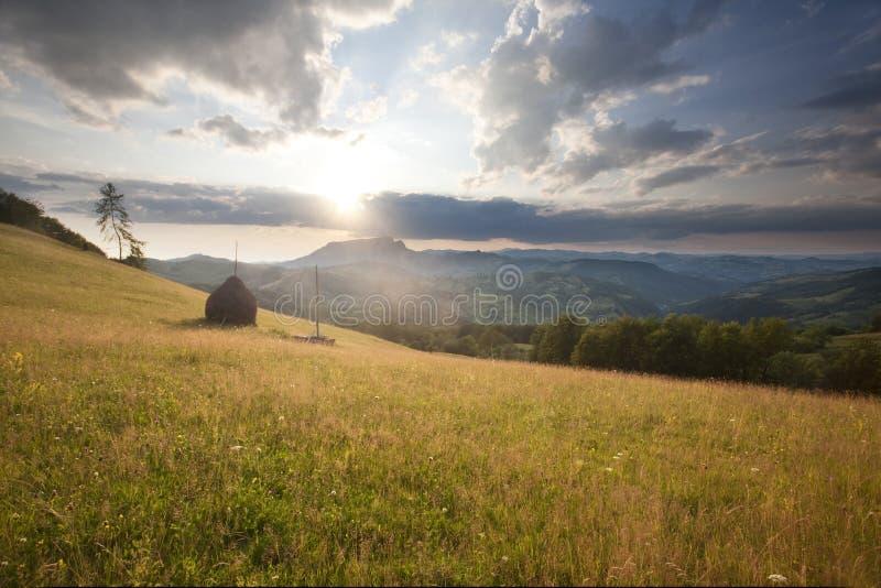 五颜六色的夏天风景 库存图片