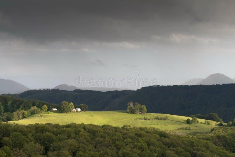 五颜六色的夏天风景 免版税库存照片