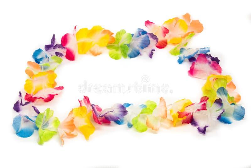 五颜六色的夏威夷花项链 库存照片