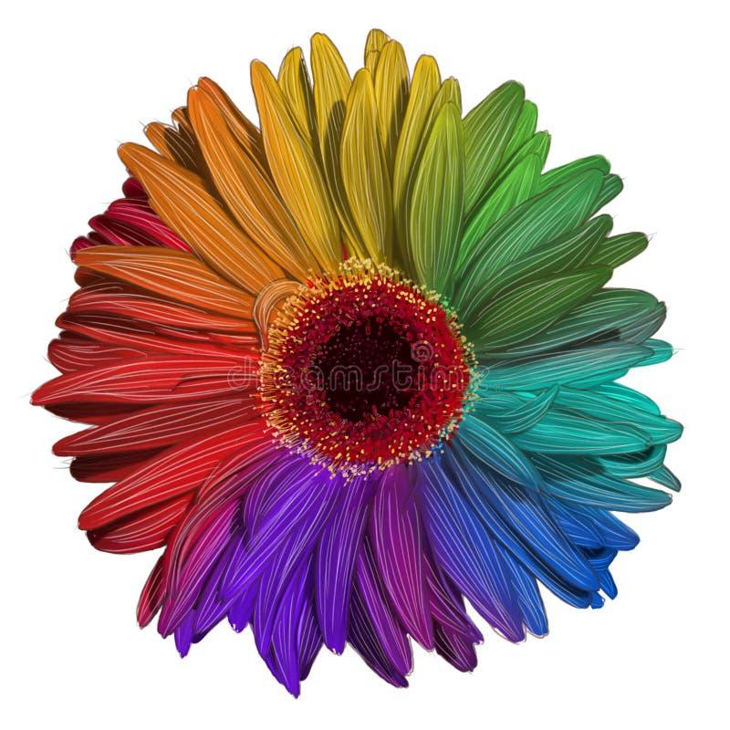 五颜六色的大丁草花图画  库存例证