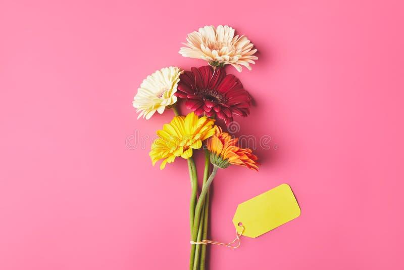 五颜六色的大丁草花束开花与空白的标记,母亲节概念 免版税图库摄影
