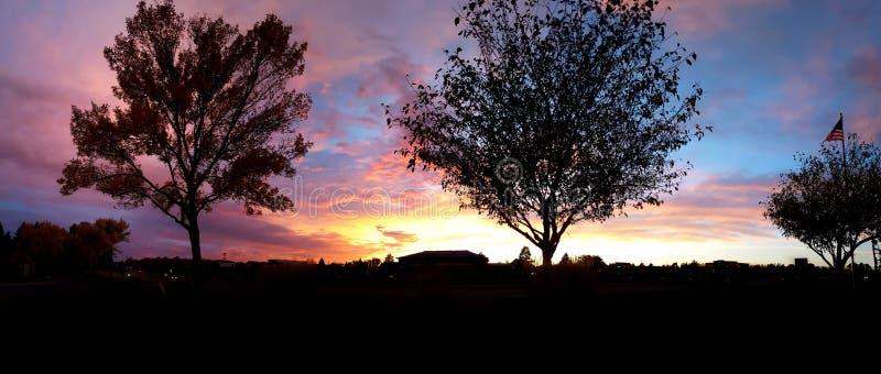 五颜六色的太阳设置了在有树剪影的城市 免版税库存图片