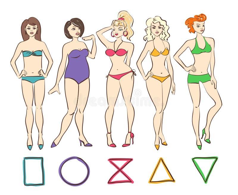 五颜六色的套女性身体形状类型 库存例证