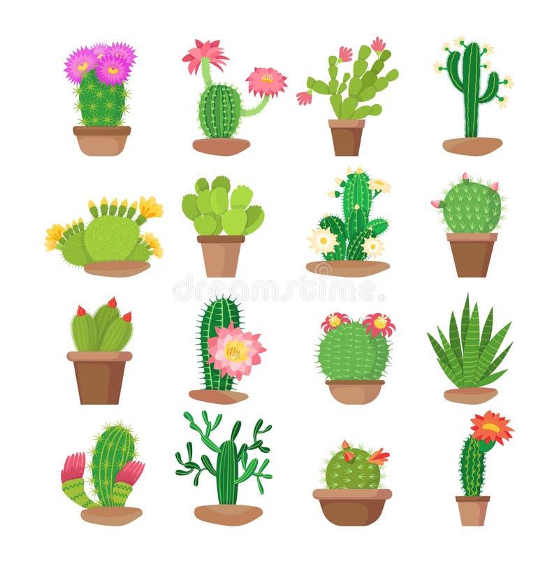 五颜六色的套明亮的在罐的家开花的仙人掌 向量例证