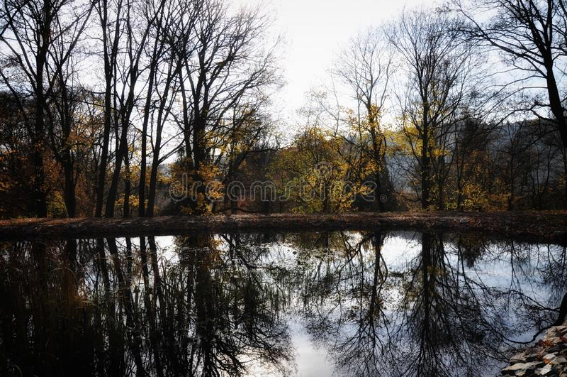 五颜六色的宽广的叶子树反射了水表面上秋天/秋天白天 库存图片