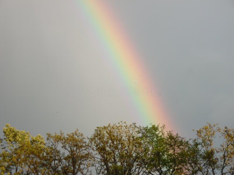 五颜六色的彩虹 库存照片