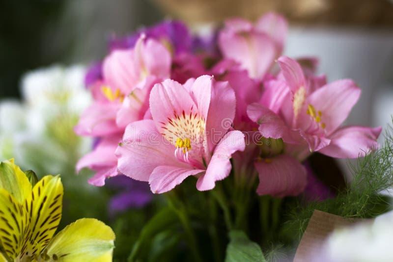 五颜六色的德国锥脚形酒杯花 以礼物bo的形式,多彩多姿的德国锥脚形酒杯大花束在花店的被卖 图库摄影