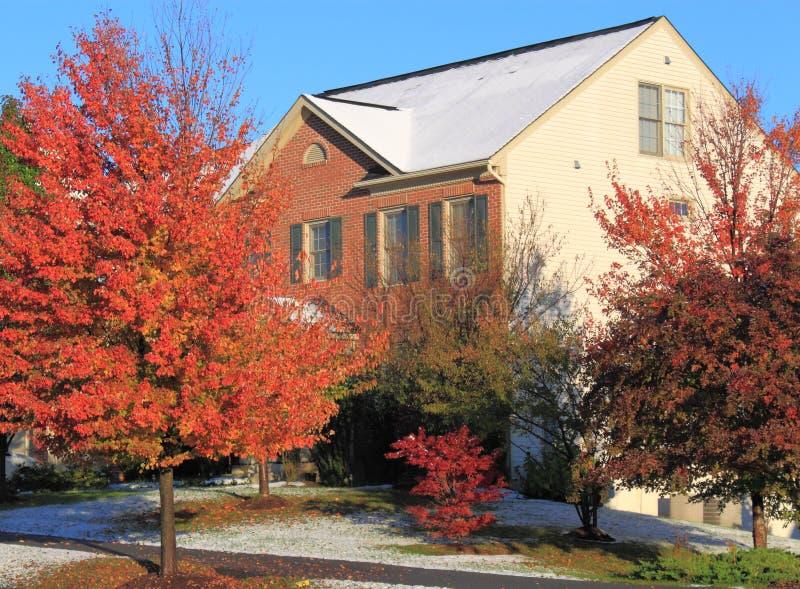 五颜六色的房子结构树 免版税库存图片