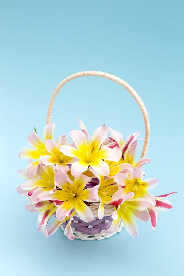 五颜六色的春天花花束,在柳条筐 库存图片