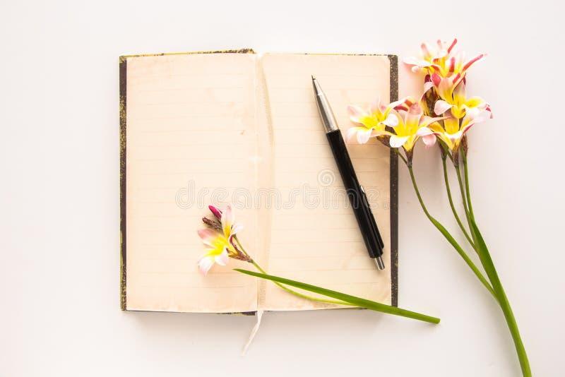 五颜六色的春天花,与文本的空白开放日志 库存照片