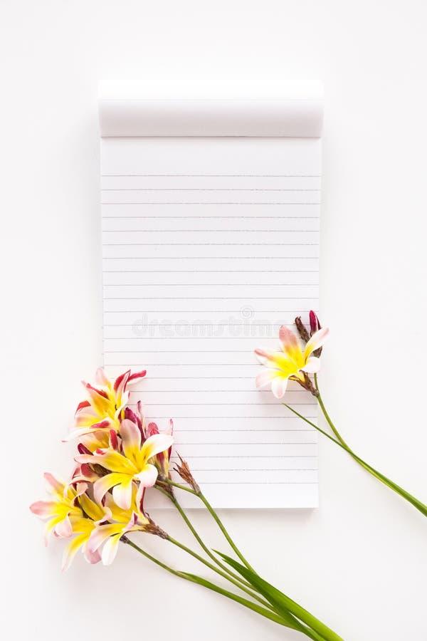 五颜六色的春天花,与文本的空白开放笔记薄 免版税库存图片