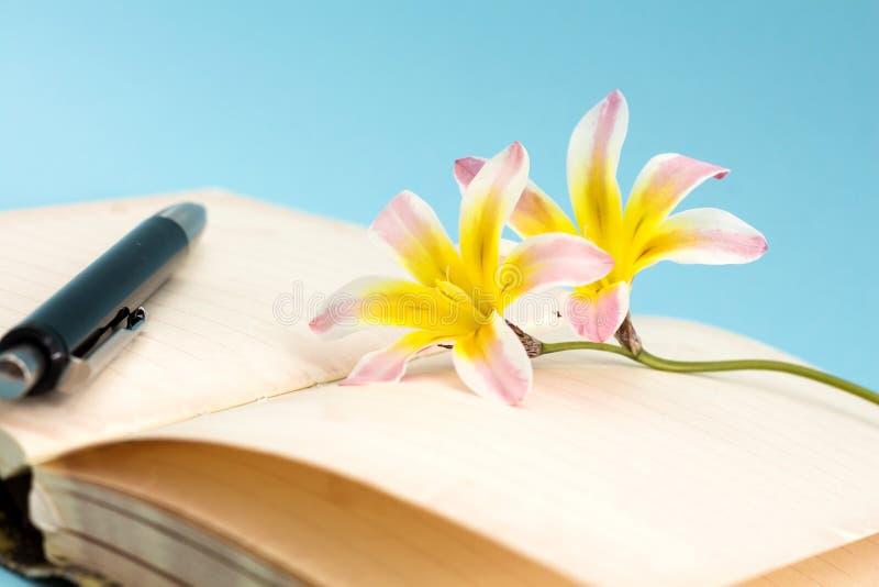 五颜六色的春天花,与空白开放日志页和笔 图库摄影
