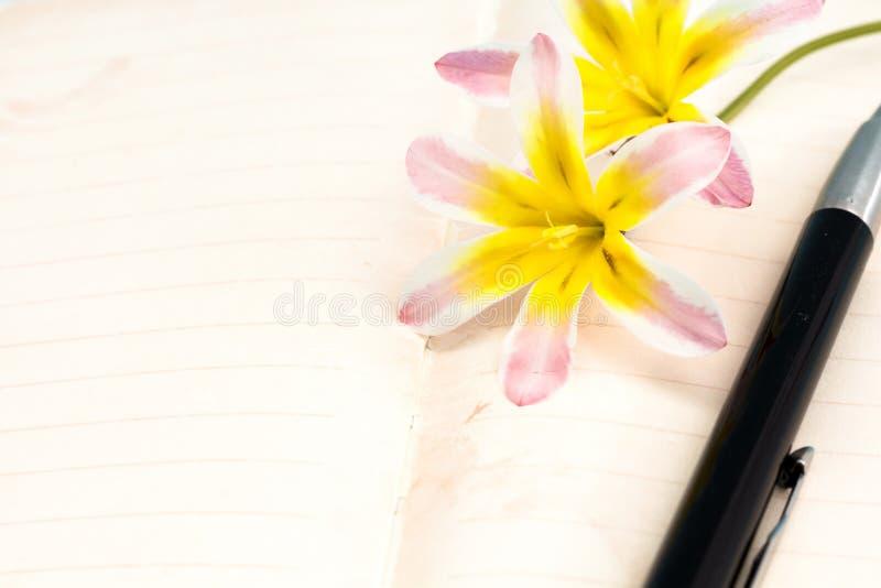 五颜六色的春天花,与空白开放日志页和笔 免版税库存照片