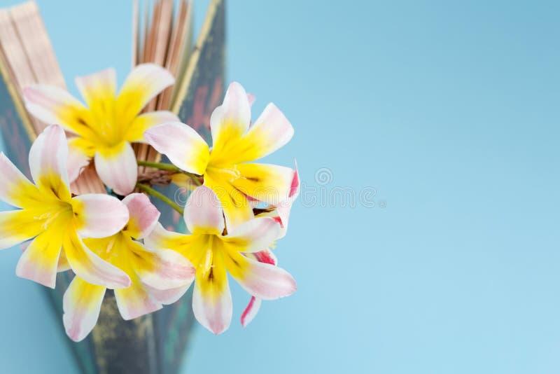 五颜六色的春天花,在页站立之间和有一点被打开的书/日志 库存图片