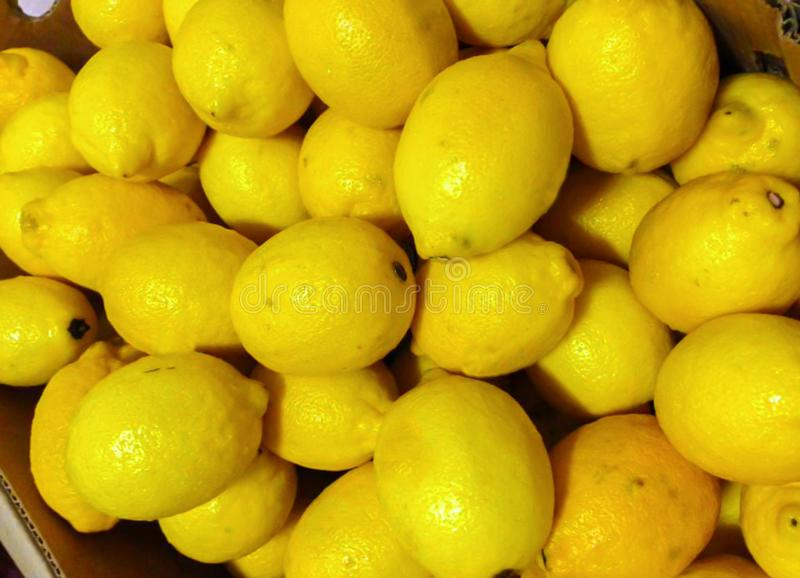 五颜六色的显示全部新鲜的黄色柠檬 图库摄影