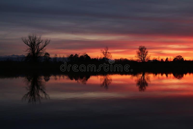 五颜六色的晚上天空和树在湖Pfaffikon 图库摄影