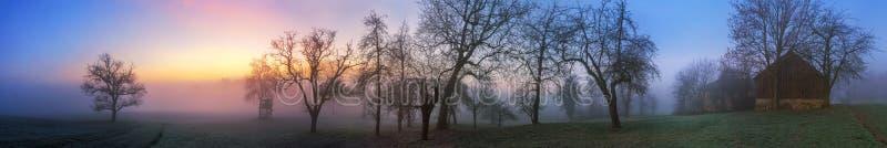 五颜六色的暮色冬天风景全景 免版税库存照片