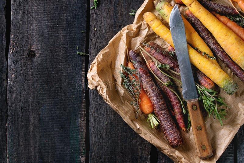 五颜六色的未加工的红萝卜 库存照片