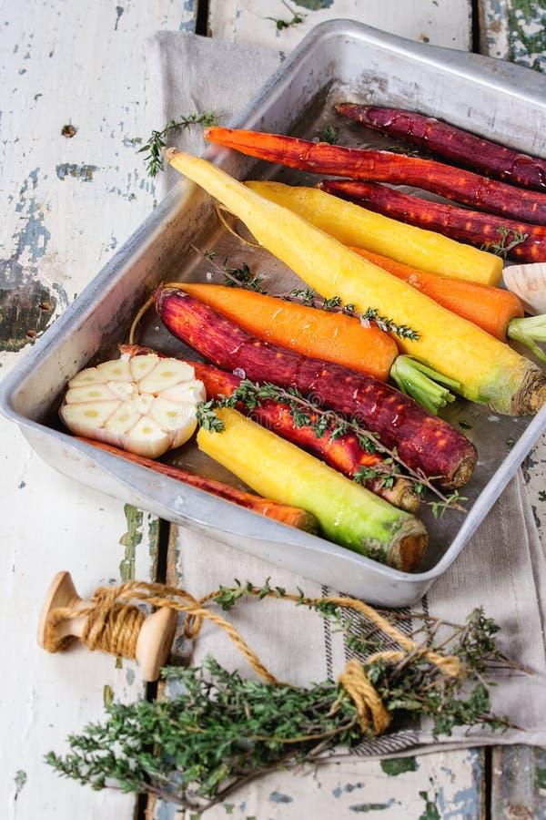 五颜六色的未加工的红萝卜 免版税库存照片