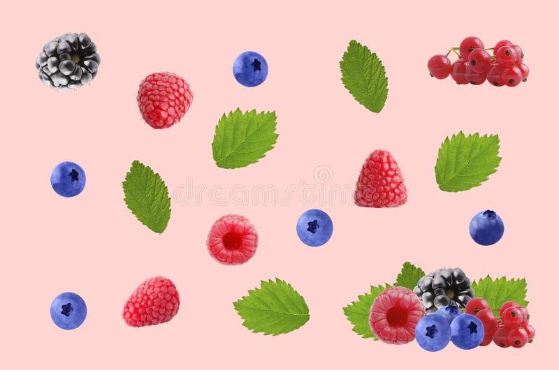 五颜六色的样式做了新鲜水果在色的背景 图库摄影